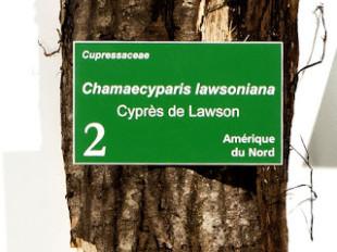Comment lire une étiquette botanique ?
