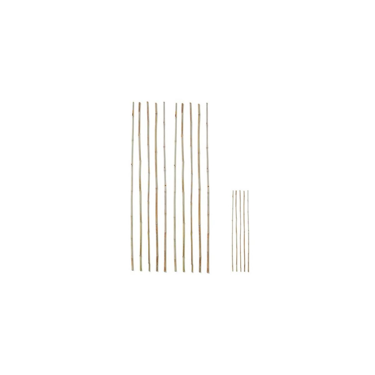 tuteur bambou achat vente tuteur plante tuteur plante grimpante botanique editions. Black Bedroom Furniture Sets. Home Design Ideas