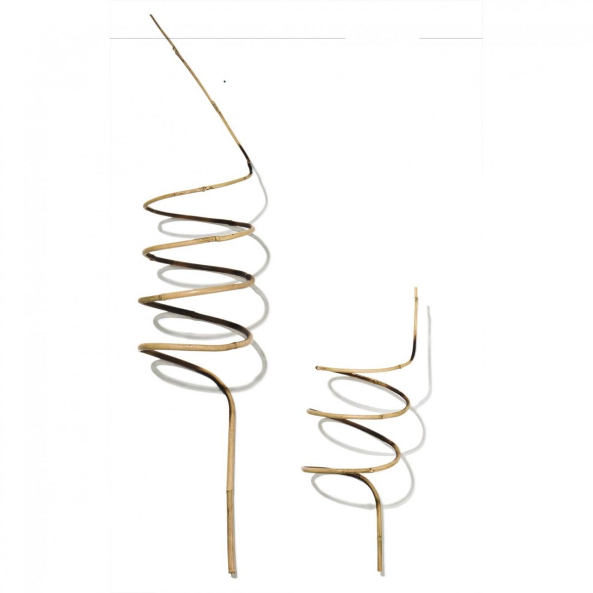 spirale en bambou 60 cm achat vente tuteur bambou tuteur plante grimpante botanique editions. Black Bedroom Furniture Sets. Home Design Ideas