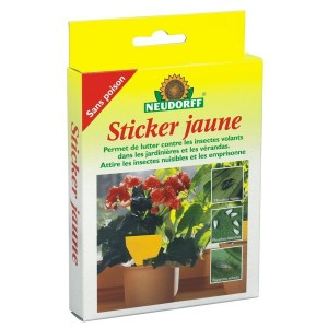Sticker Jaune