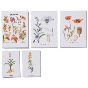 Cahiers Planches Botaniques
