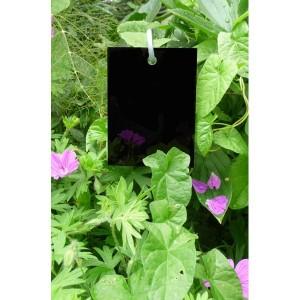 Etquette Plexiglass Noir 'Poppy' 7 x 9.5 cm