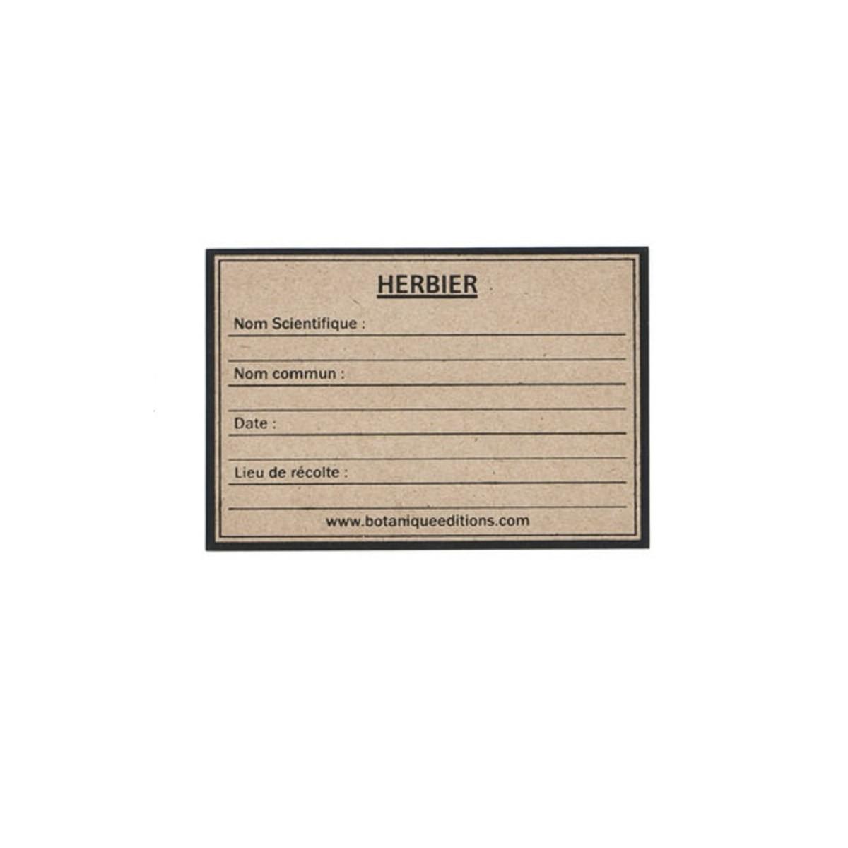 Bien-aimé Etiquettes pour Herbier Papier Kraft - Botanique Editions AA61