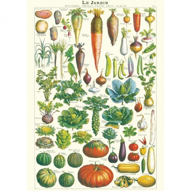 Affiche Planches Sciences Naturelles Le Jardin Cavallini