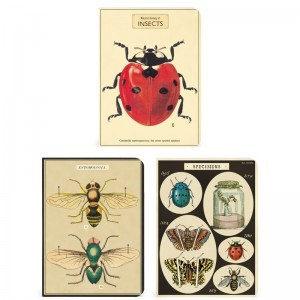 Mini Notebooks 'Insectes' cavallini