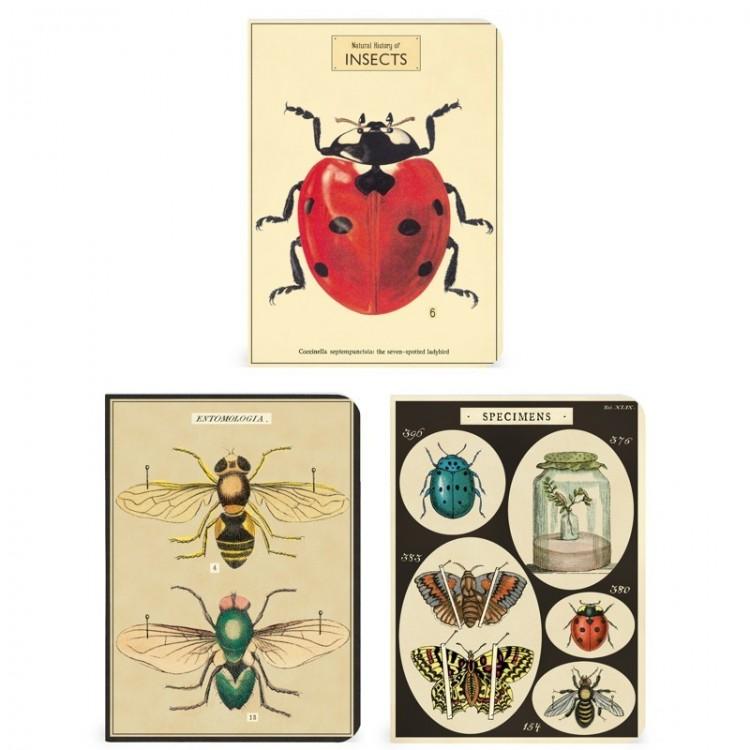 Mini Notebooks 'Insectes' cavallini