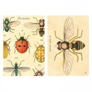 Bloc-Note Mémo 'Insectes' Cavallini
