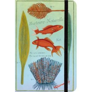 Carnet de Notes Aquatique