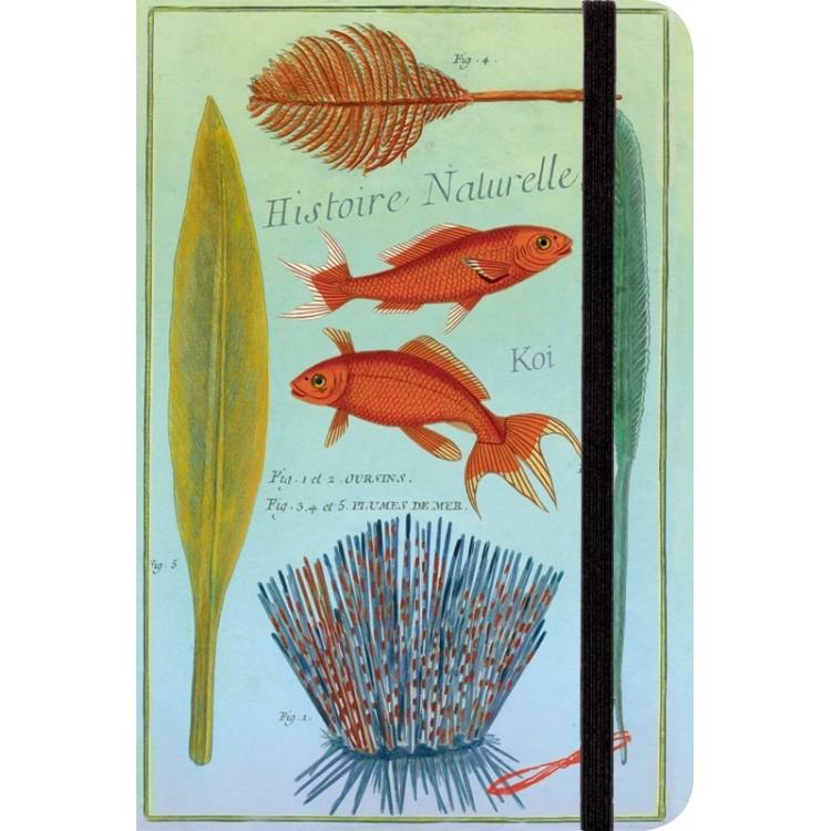 Carnet de Notes 'Aquatique'