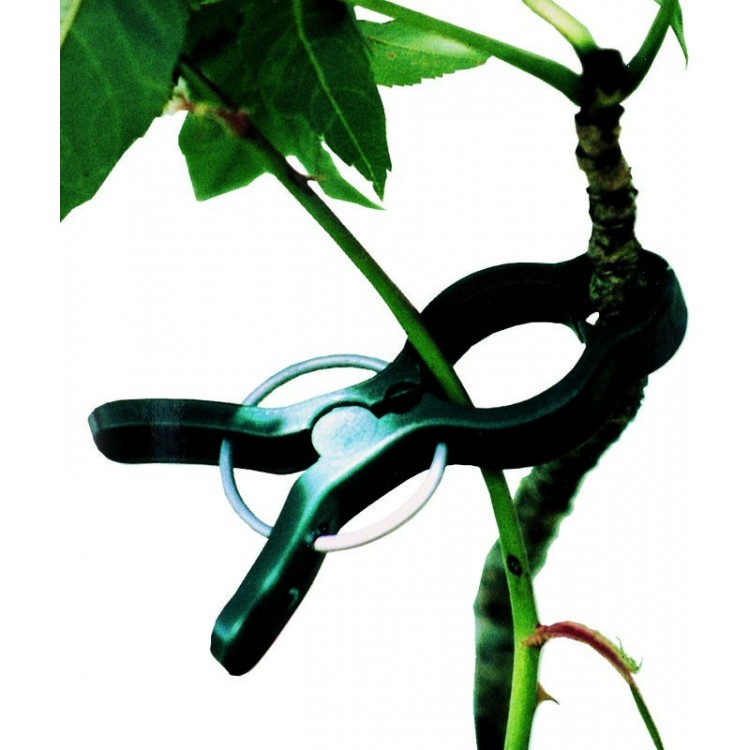 pince à plantes garden clip