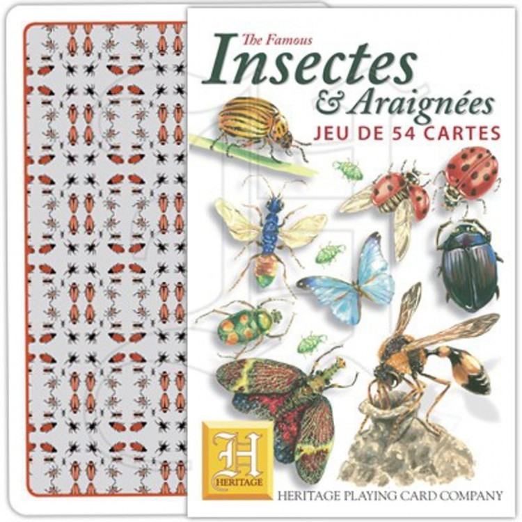 jeu de cartes insectes et araignées