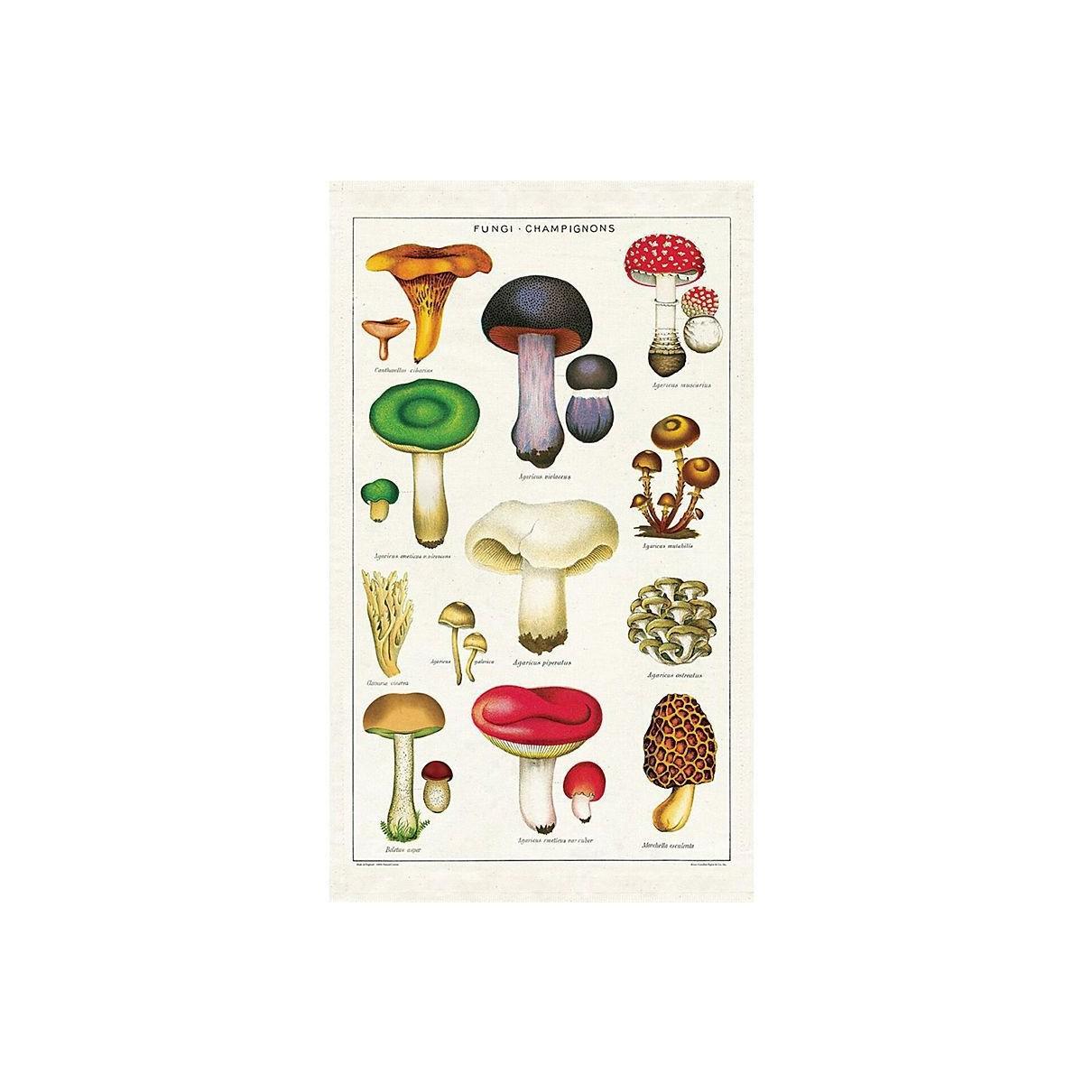 Torchon de cuisine champignons botanique editions for Torchon de cuisine