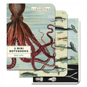Mini Notebooks Vie Sous Marine Cavallini
