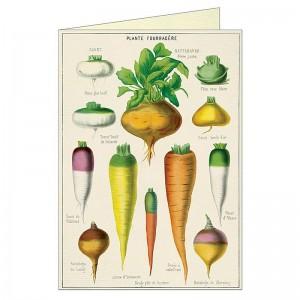 Carte Double avec Enveloppe Légumes