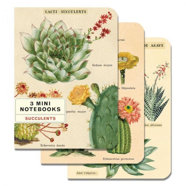 Mini Carnets Cactus et Succulentes Cavallini