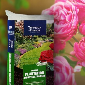 Terreau Arbustes & Rosiers
