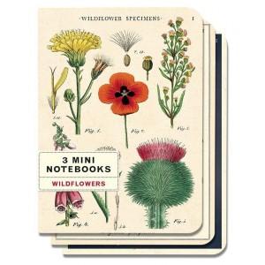 Carnets de Notes Fleurs Sauvages