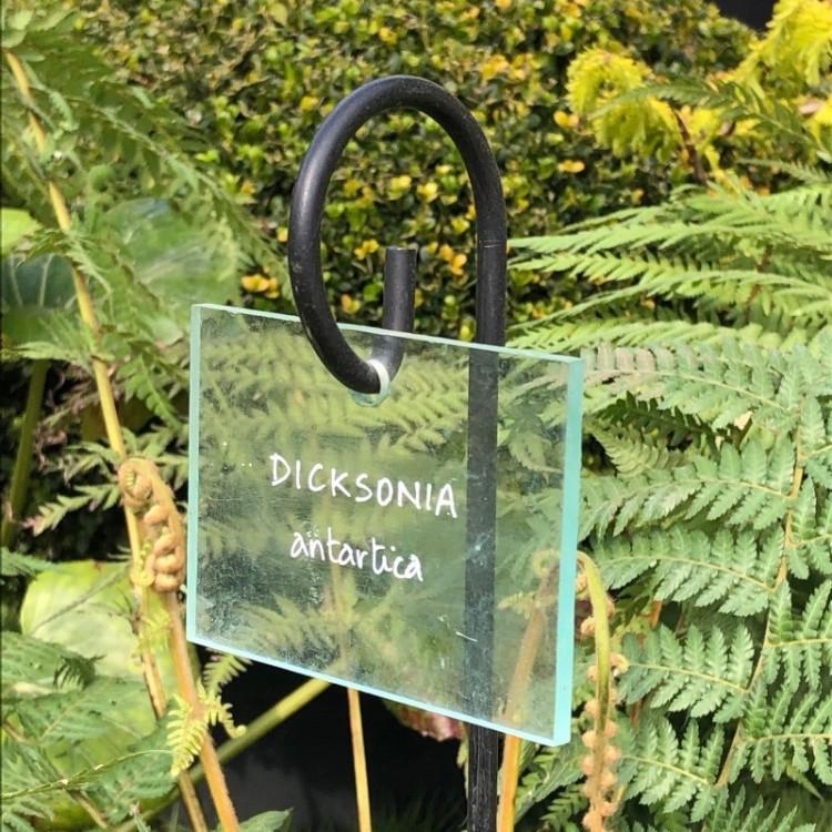 Etiquette de jardin en plexiglass
