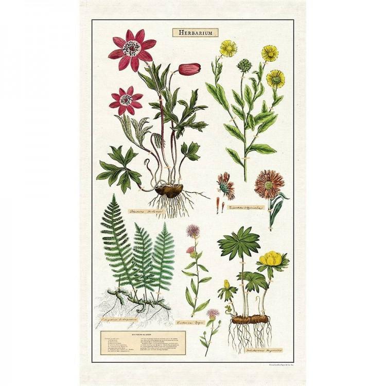 Torchon de Cuisine Herbarium