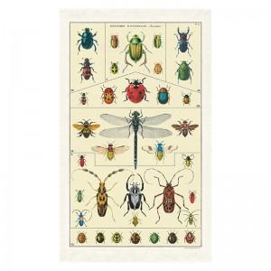 Torchon de Cuisine Insectes