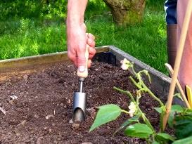 Les outils pour planter les bulbes - Quand planter de la pelouse ...