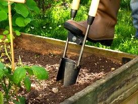 les outils pour planter les bulbes. Black Bedroom Furniture Sets. Home Design Ideas