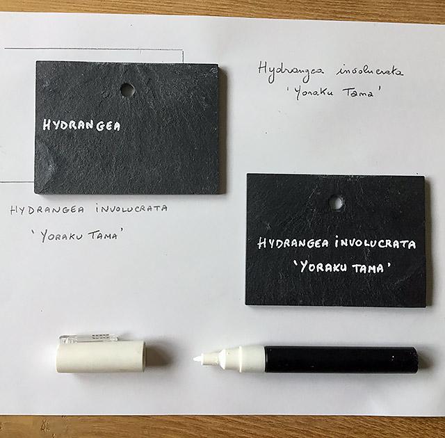 modèle écriture sur une étiquette