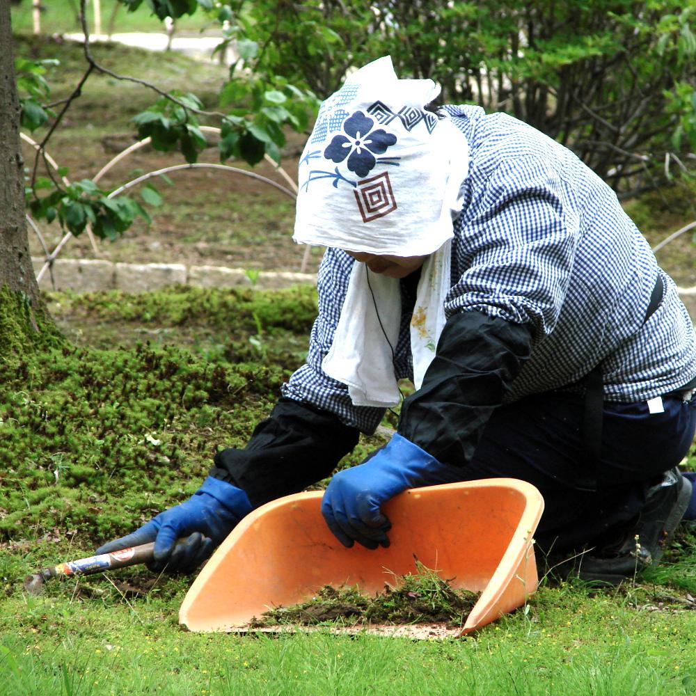 Désherbage dans un jardin à Kyoto